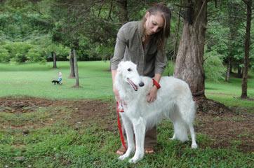 dog-training-raleigh-durham
